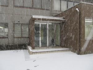 初雪:事務所入り口